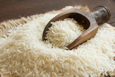 جلوگیری از حشره زدن برنج